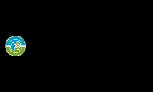 Texas Commission of Environmental Quality Logo- Midland and Trenton, TX